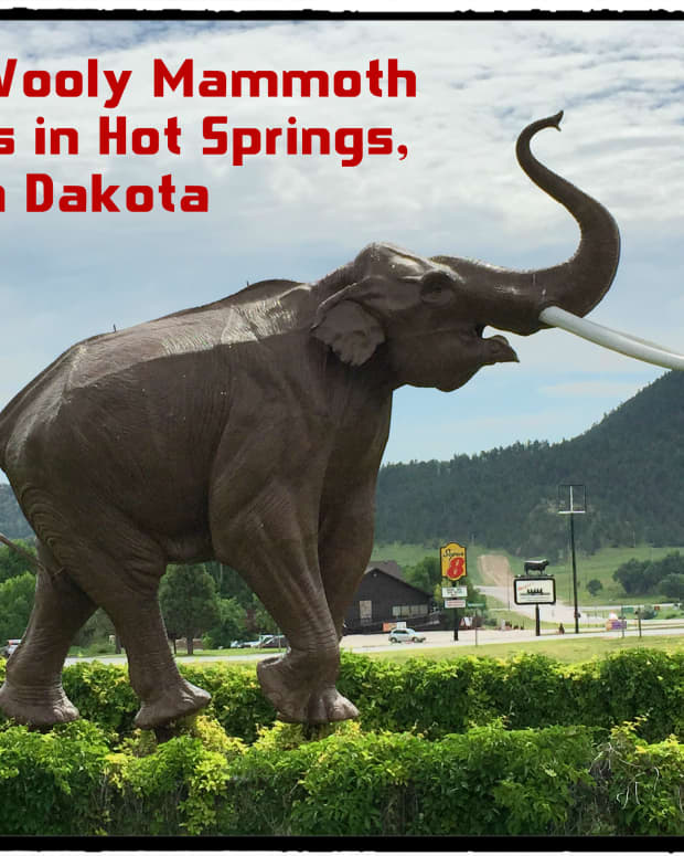 visit-the-mammoth-site-of-hot-springs-south-dakota-walk-among-wooly-mammoth-fossils