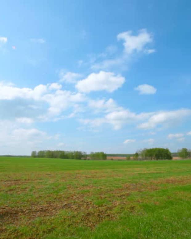 weston-wagons-west-episode-h5-jasper-county-iowa-continued-growth