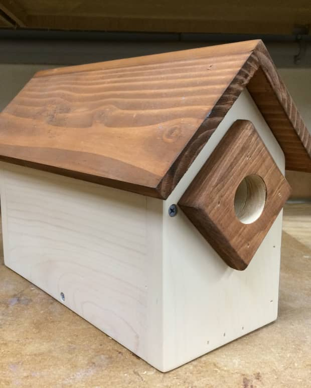 how-to-build-a-birdhouse-condo-birdhouse-condo-plans