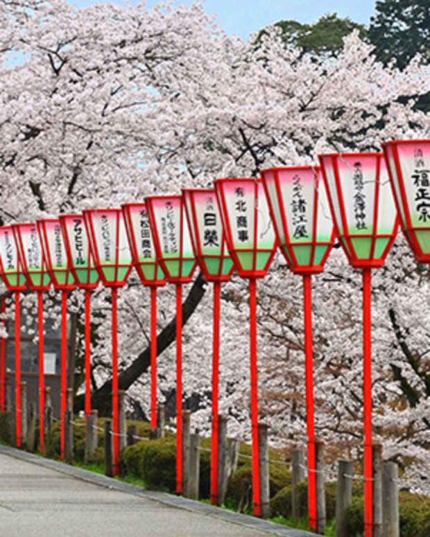 8-tips-for-sakura-viewing-in-japan