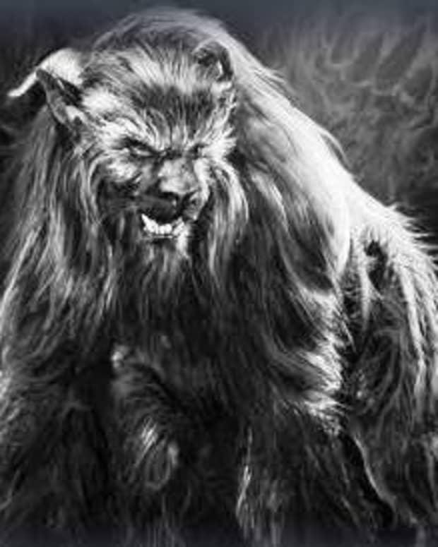 the-ozark-howler-mythical-beast-or-elaborate-hoax