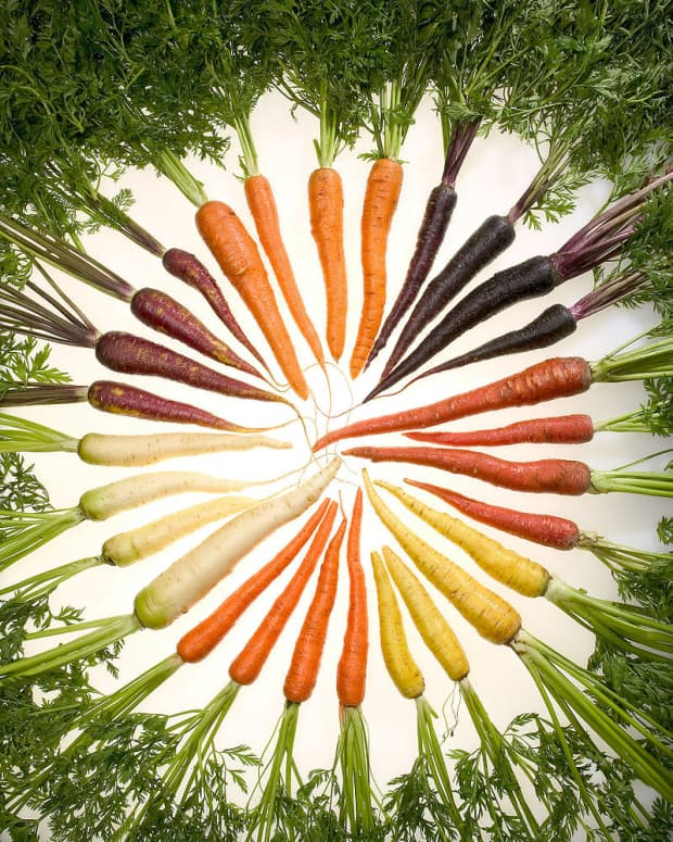 why-carrots-are-different-colors
