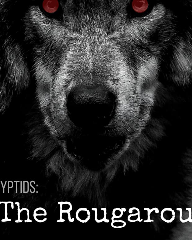 the-rougarou-louisianas-cajun-werewolf