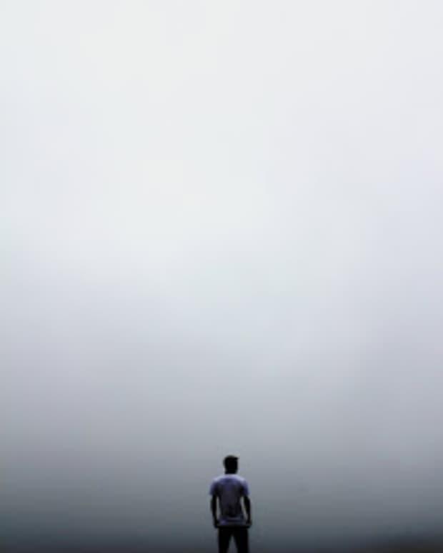 fly-in-empty-sky
