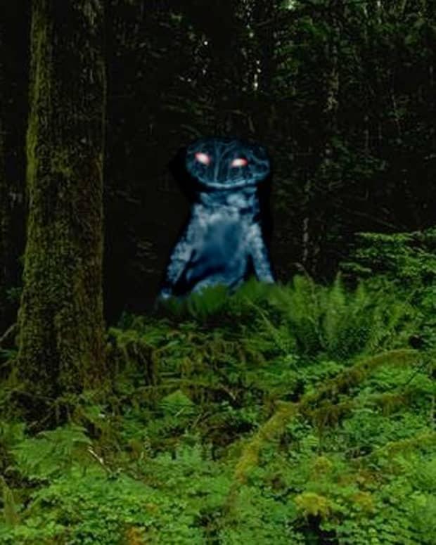 the-loveland-frog-monster-alien-or-escaped-pet