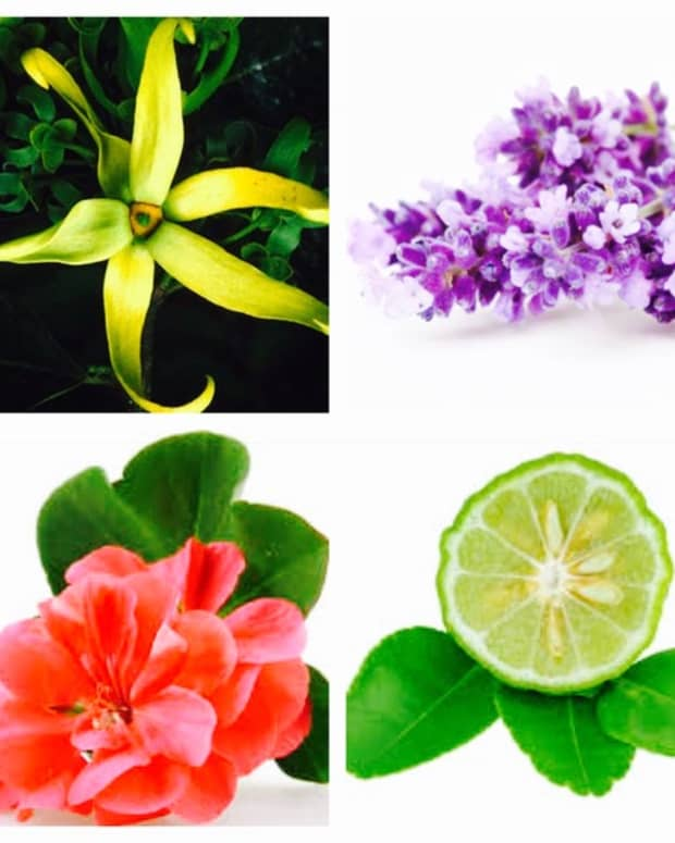 8-essential-oils-to-help-boost-your-mood-in-winter