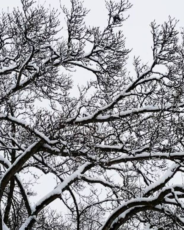 7-simple-ways-to-beat-the-winter-blues