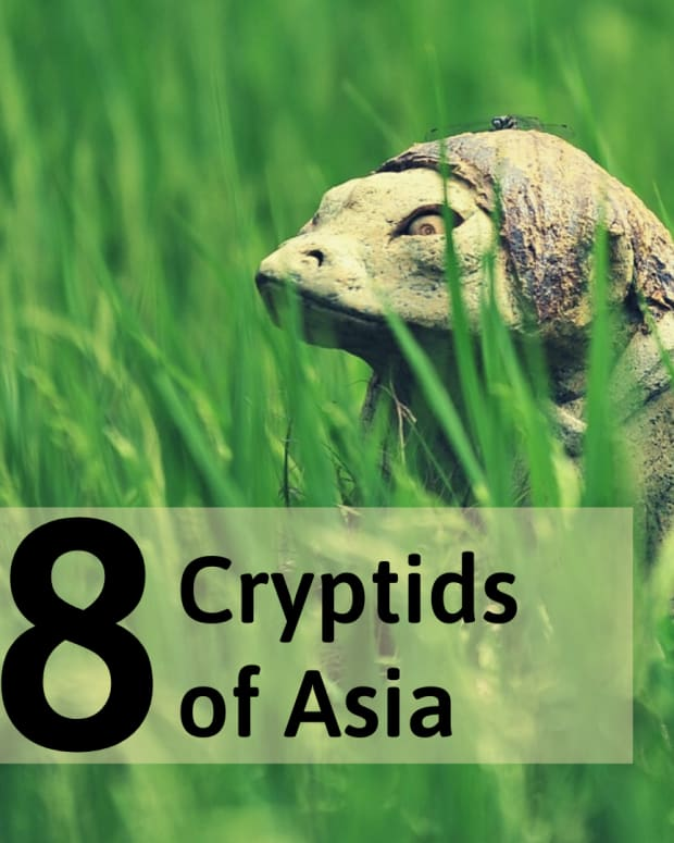 8-mysterious-monsters-of-asia