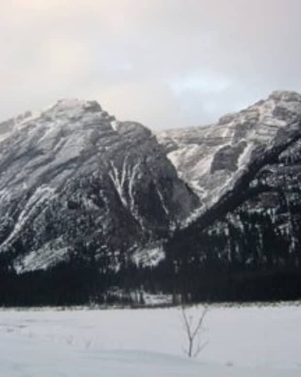 winters-limitless-beauty