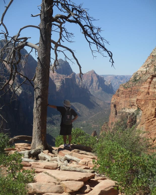 all-about-the-angels-landing-hiking-trail