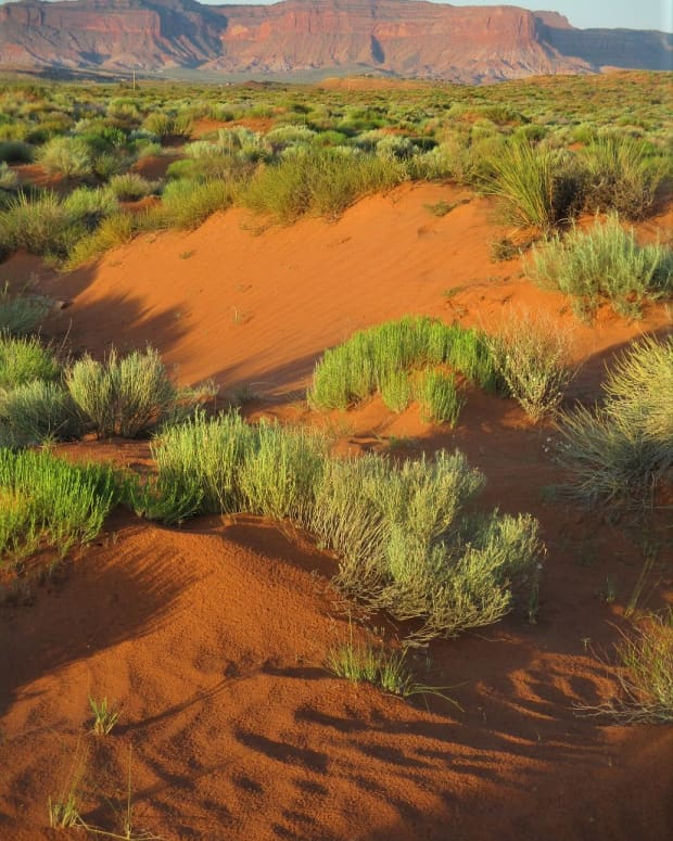 desert-hiking-advice
