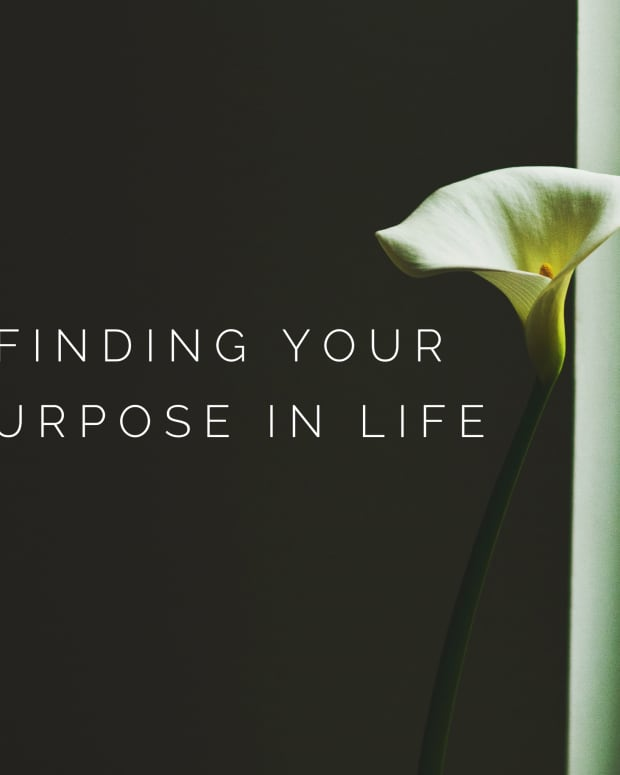 your-purpose-in-life