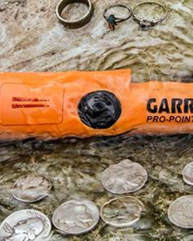 my-review-of-the-garrett-pro-pointer-garrett-carrot