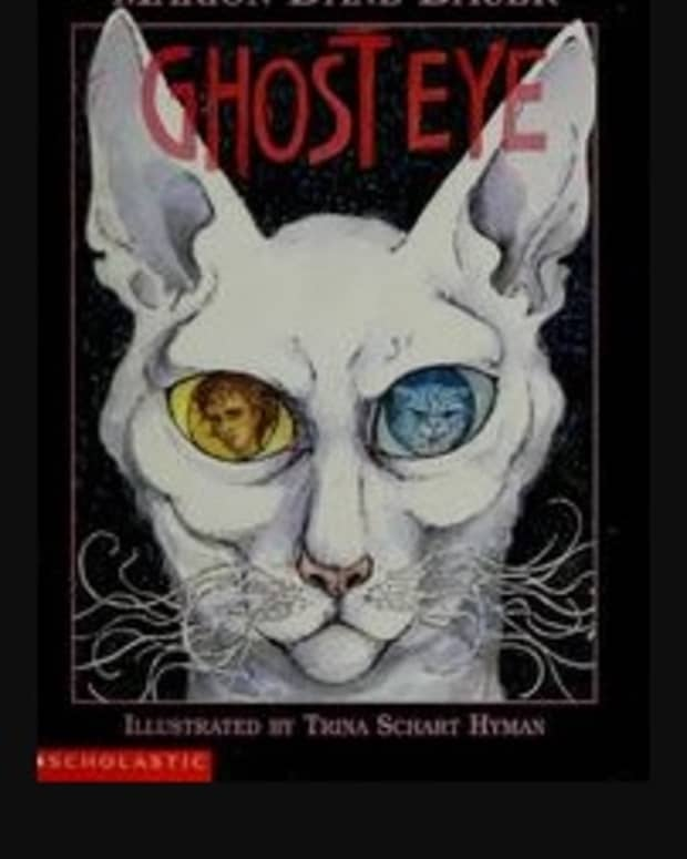 ghost-eye-a-book-review-grade-level-3-5