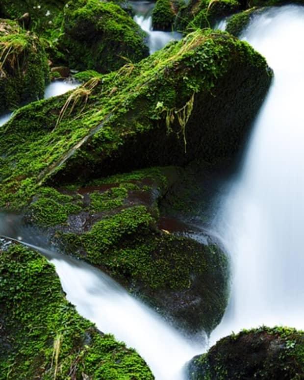 peaceful-water