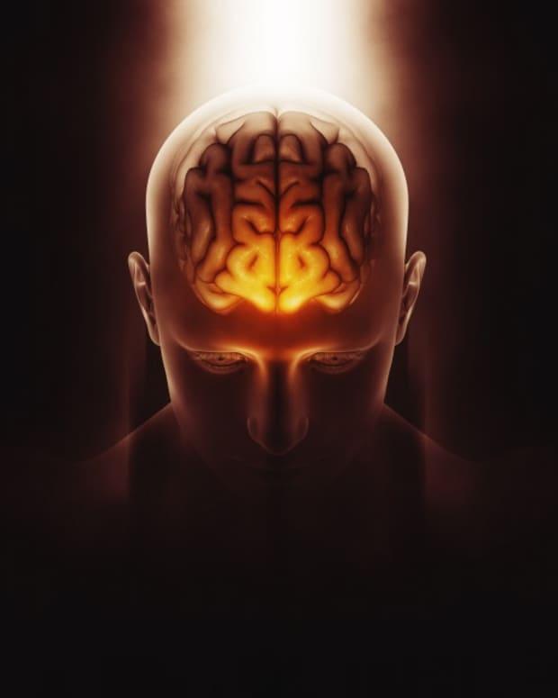great-youtube-niche-mind-and-brain-healing-videos