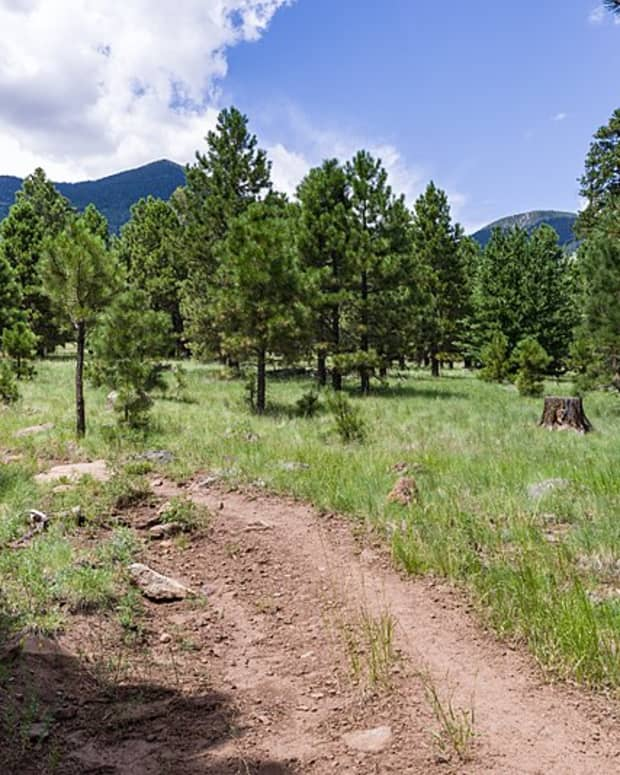 hiking-the-weatherford-trail-in-flagstaff-arizona