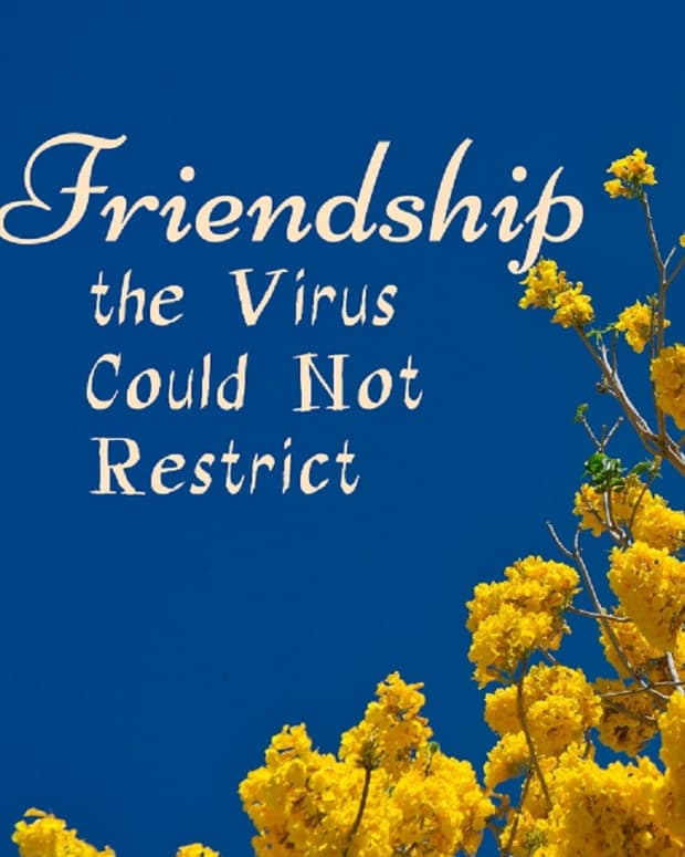 friendship-the-virus-could-not-restrict
