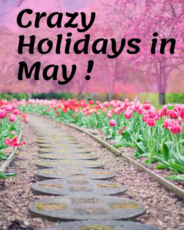 fun-and-crazy-holidays-in-may-youll-want-to-celebrate