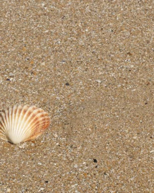 just-another-shell