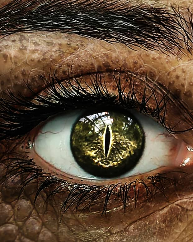 how-to-spot-a-reptilian-shapeshifter-5-signs-that-someone-may-be-a-reptilian-or-a-hybrid