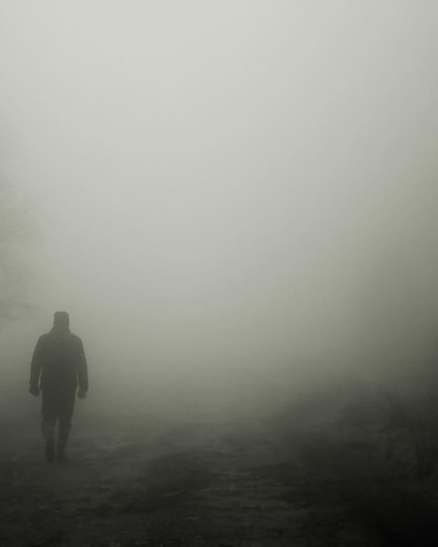 fogs-vengence