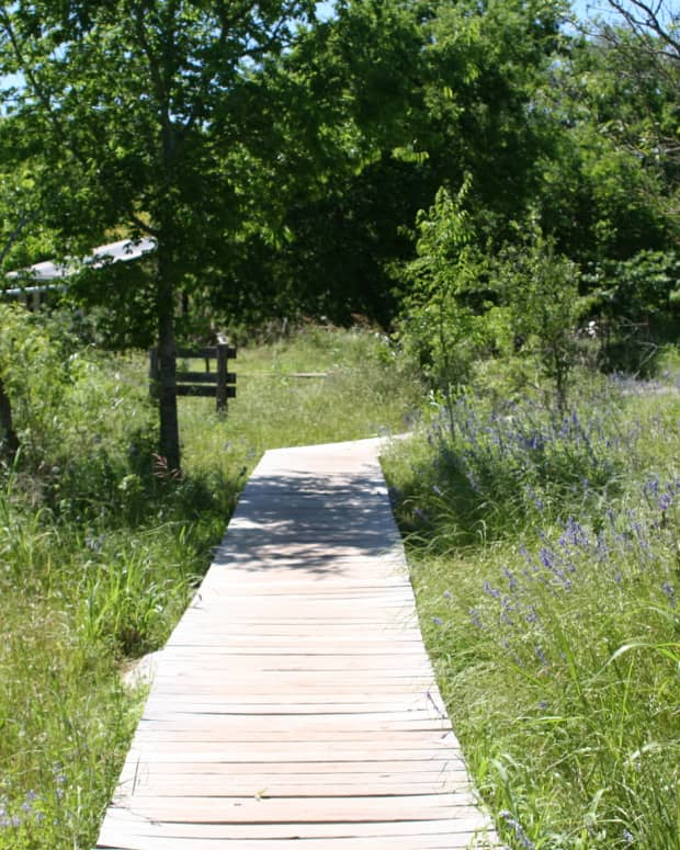 top-5-hiking-trails-in-san-marcos-texas