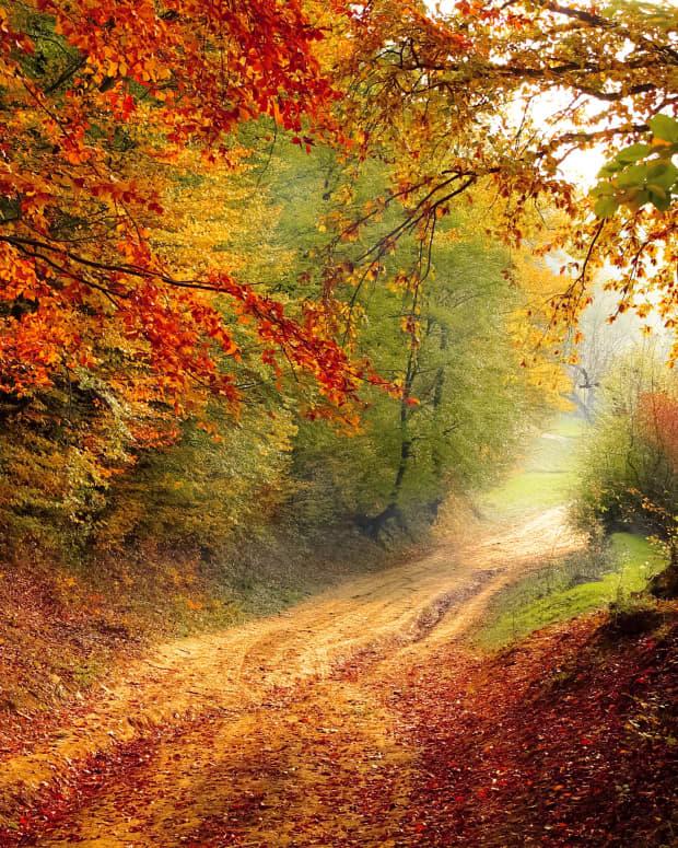 evening-fall