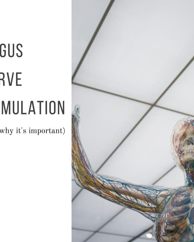 vagus-nerve-stimulation-why-its-vital-for-your-health