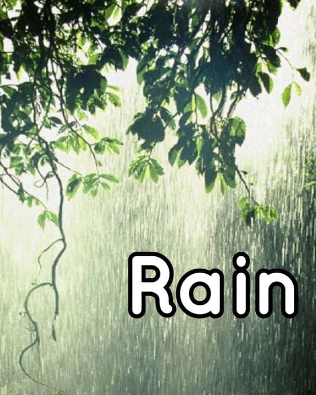 rain-the-poem