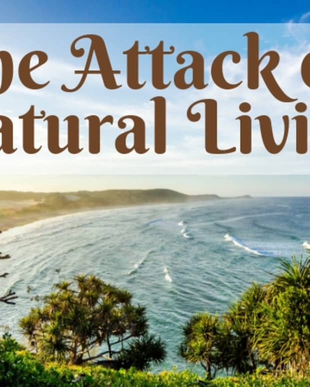 the-attack-on-natural-living