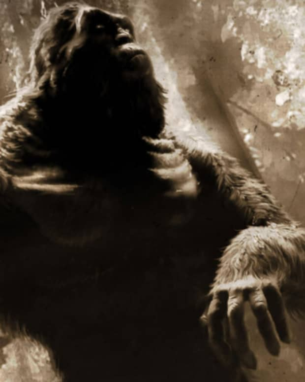 wartime-mystery-the-rock-apes-of-vietnam