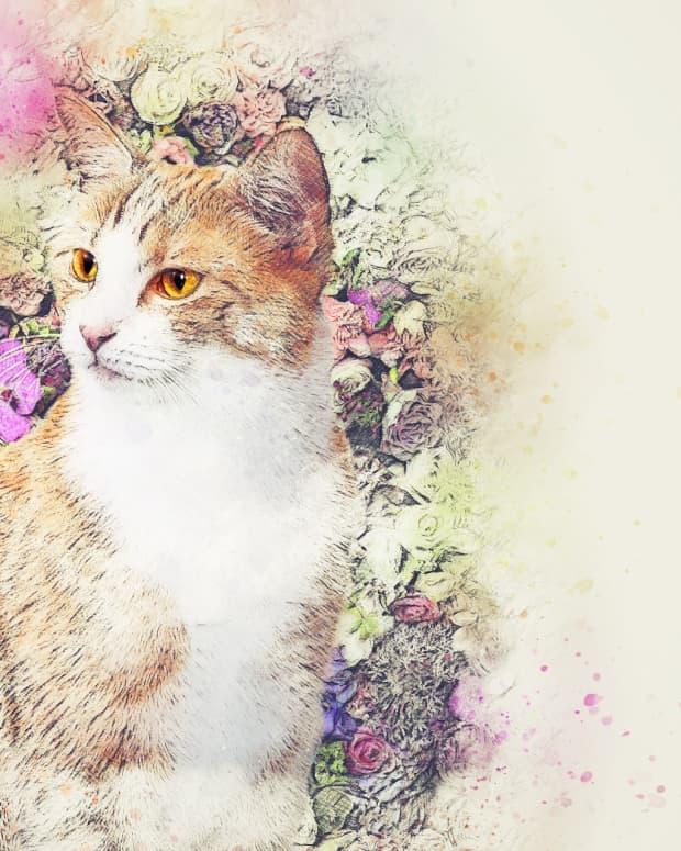 cat-poems-dr-seuss-style