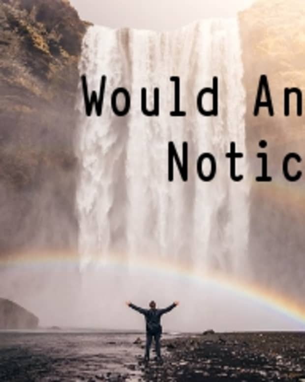 would-anyone-notice