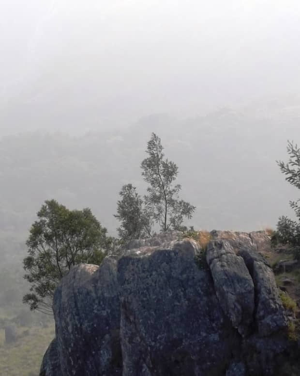 offbeat-things-to-do-at-ooty