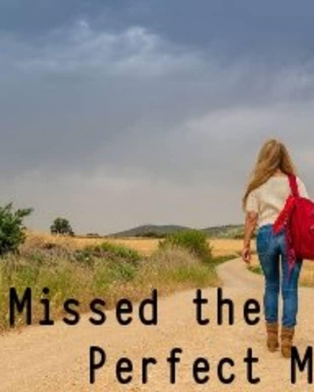 poem-i-missed-the-perfect-mile