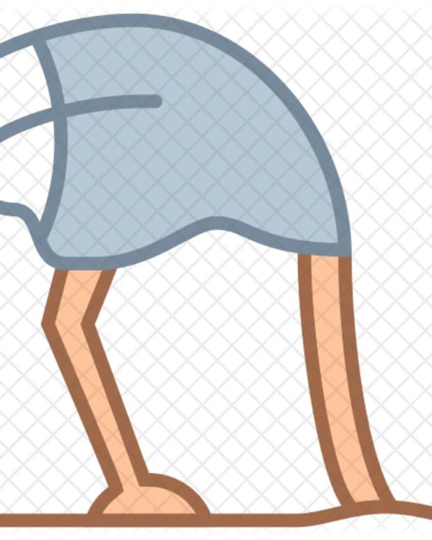 hiding-like-an-ostrich