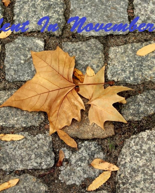 silent-in-november-a-poem