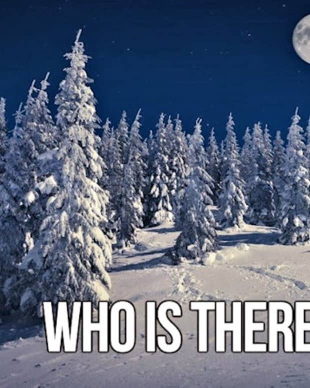 who-is-there4