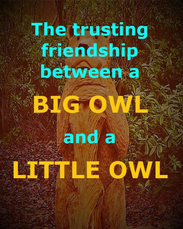 little-owl-a-friendship-poem