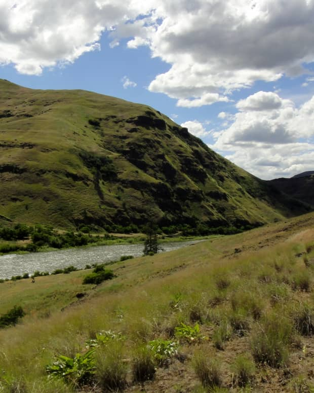5-best-fly-fishing-spots-within-an-hours-drive-of-pullman-wa
