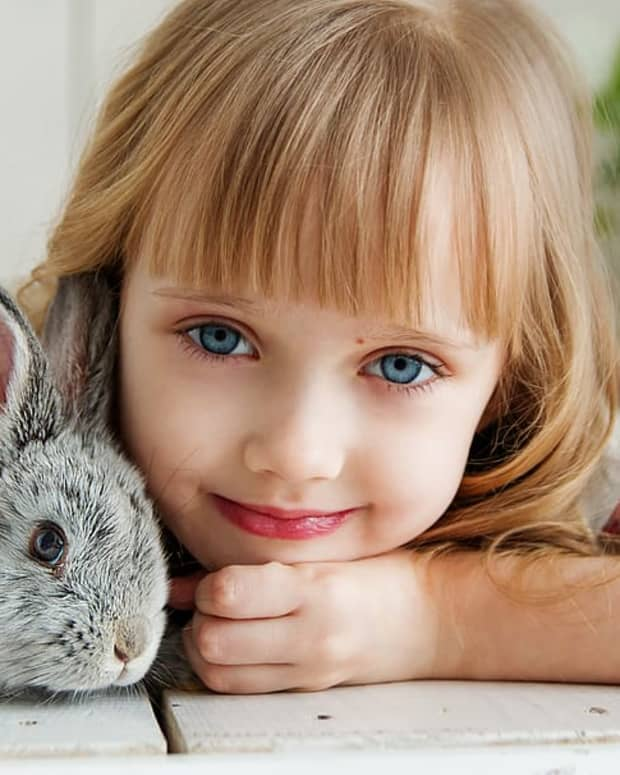 how-to-raise-kind-children