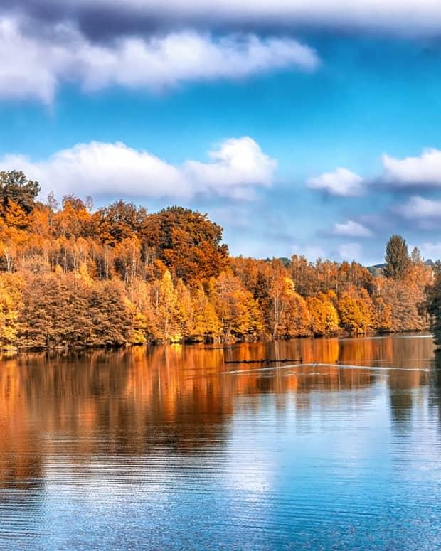 autumn-splendor-fall-delight
