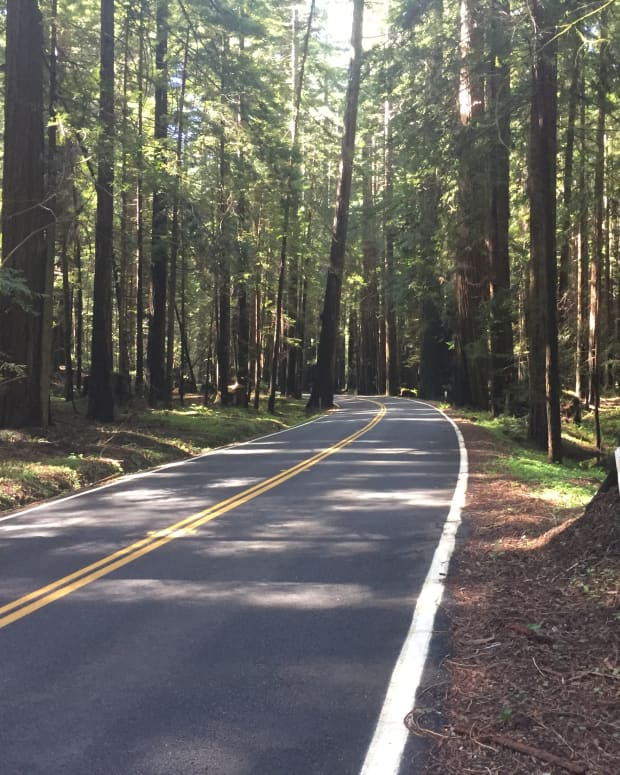 avenue-of-the-giants-a-vacation-destination-in-the-california-redwoods