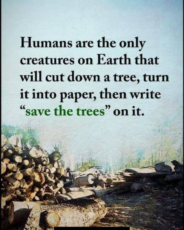 save-earth-save-it-from-ourselves