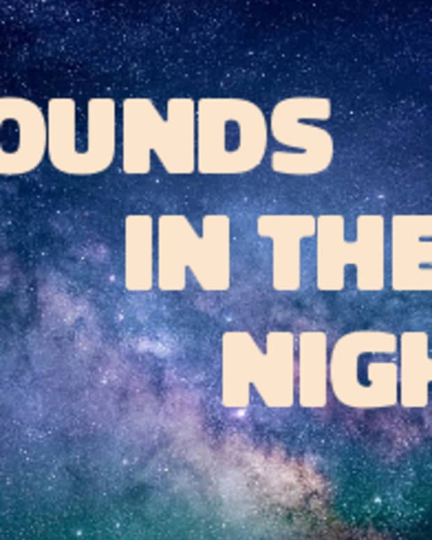 poem-sounds-in-the-night