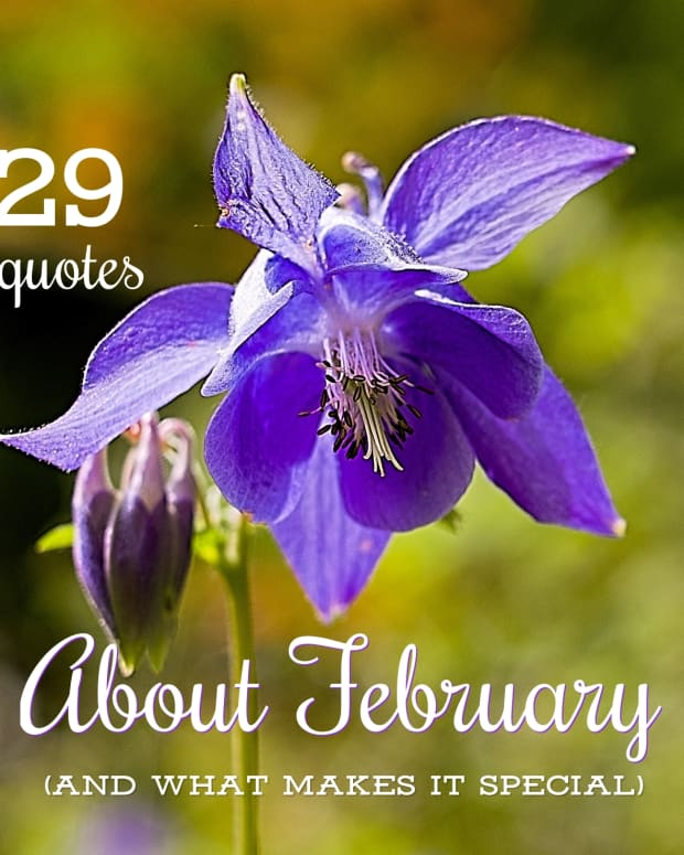 quotes-about-february-and-what-makes-it-unique