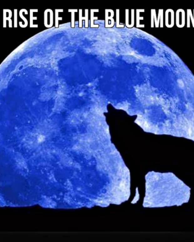 the-rise-of-the-blue-moon