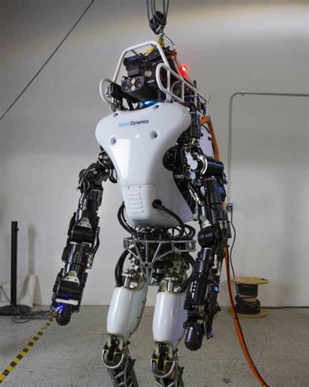 human-robotic-tendencies