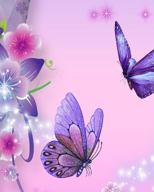 love-like-a-butterfly